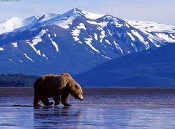 I Have Been to Alaska