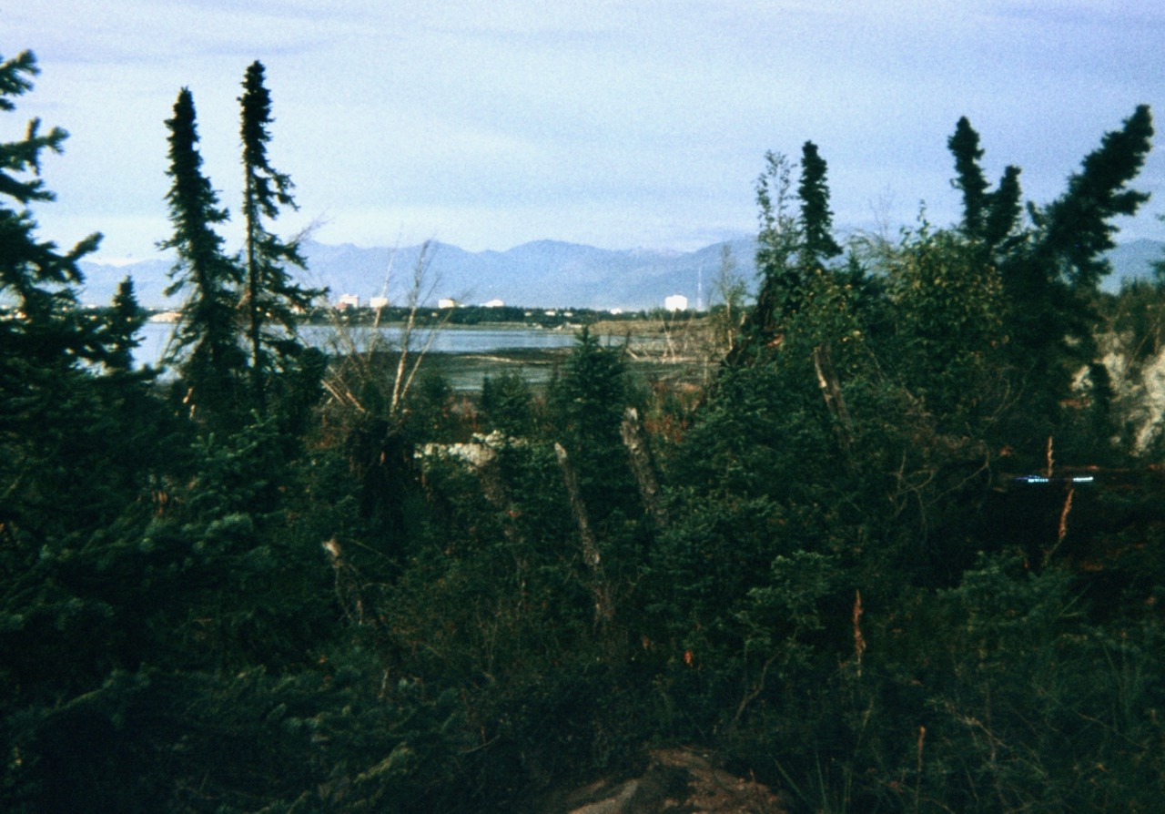 1967 earthquake park in Anchorage