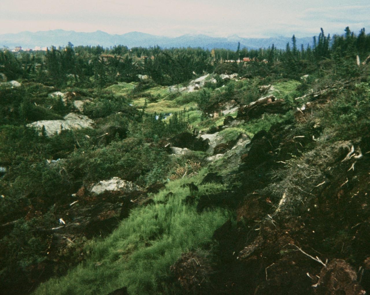 earthquake park anchorage alaska